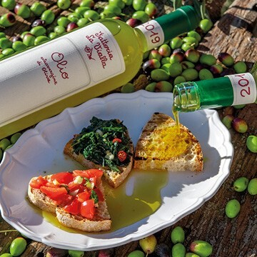 LOGO_Extra Vergin Olive Oil