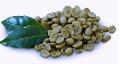 LOGO_Coffee ( Arabica , Robusta)