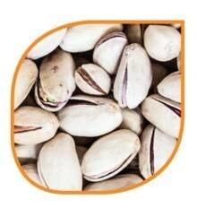LOGO_Natural Organic Pistachio