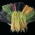 LOGO_Organische und Glutenfreie Bohnen Pasta