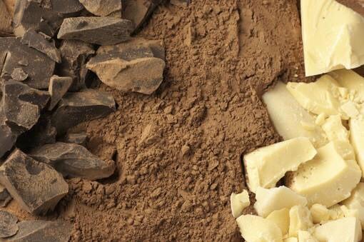 LOGO_Cocoa Liquor & Butter