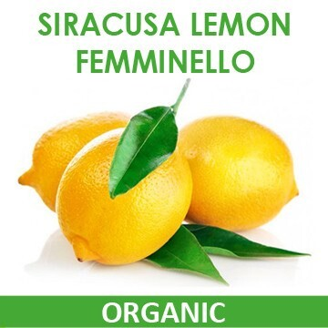 LOGO_Siracusa Lemon Femminello - ORGANIC