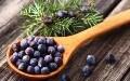LOGO_Juniper Berries