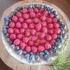LOGO_Blueberries