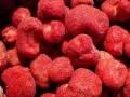 LOGO_TK Fruchte