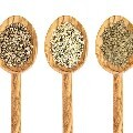 LOGO_Organic Hemp seeds, hulled & 70% protein powder