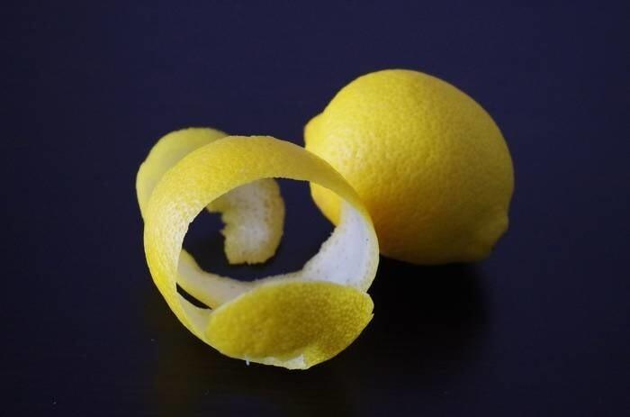 LOGO_Lemon Peels