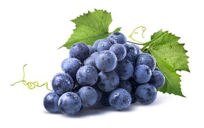 LOGO_Organic grape seed extract