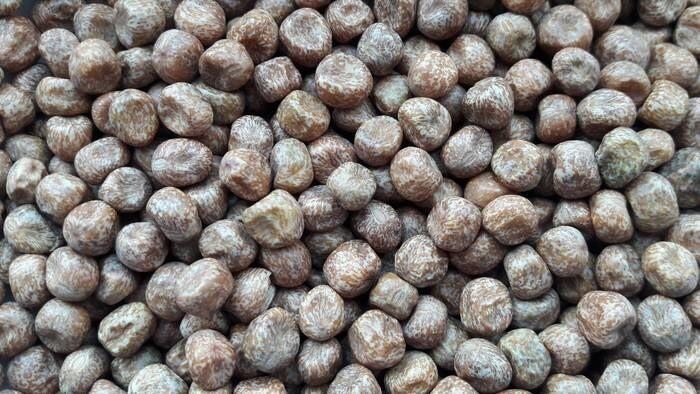 LOGO_Organic Brown Pea and Fava Bean Starchy Flour