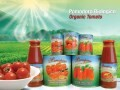 LOGO_Organic strained tomatoes
