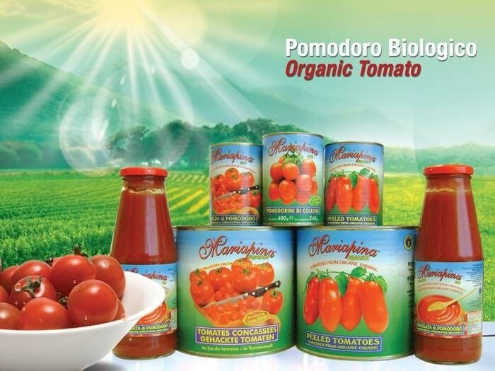LOGO_Organic small hillock tomatoes