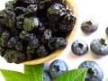 LOGO_Conventional & Organic Infused Dried Blueberries