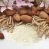LOGO_Almond protein