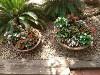 LOGO_Marula shells for landscaping
