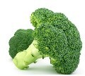 LOGO_Organic Broccoli