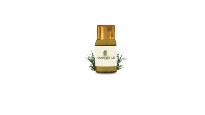 LOGO_Citronella Oil (Cymbopagan winterianus jowitt) – 5,716 kg annually