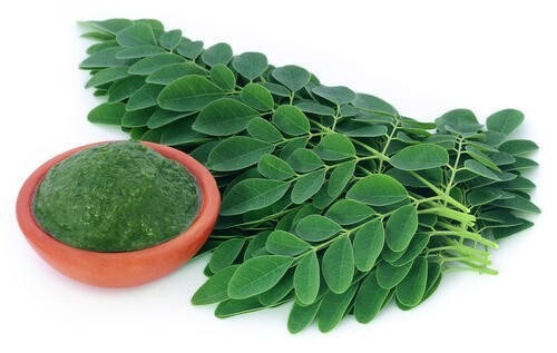 LOGO_Demeter certified Solar Dried Moringa Leaf Powder