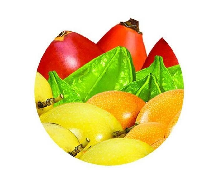 LOGO_Organic Exotic Fruits