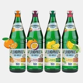 LOGO_Landpark Bio-Limonaden