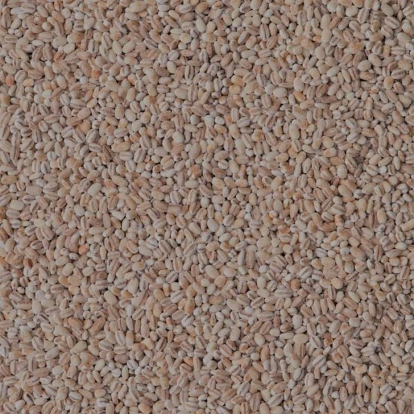LOGO_Organic Cereals