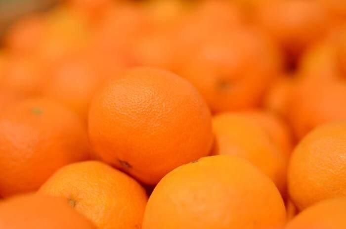 LOGO_Tangerines