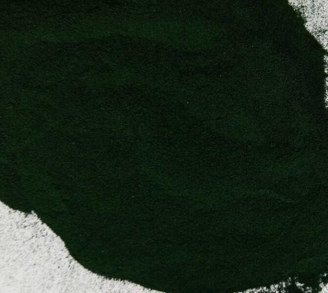 LOGO_Algae products: spirulina and chlorella