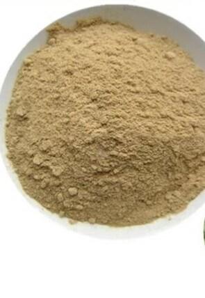 LOGO_Dunaliella Salina Algae powder
