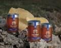 LOGO_Organic Pine Honey