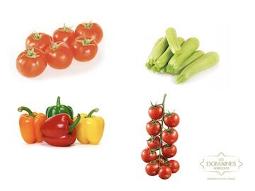 LOGO_Vegetables