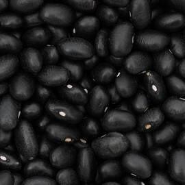 LOGO_ORGANIC BLACK KIDNEY BEANS