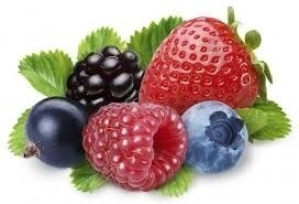 LOGO_Berries ( erdbeeren, raspberren, heidelbeeren, brombeere)