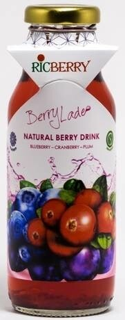 LOGO_Natural Juice from berry syrup with Ice Age water