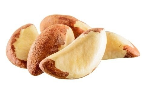LOGO_Brazil nuts