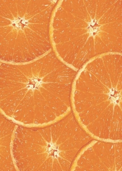 LOGO_Naturland Orangen Extrakt, Naturland Zitronen Extrakt, Naturland Cola Extrakt