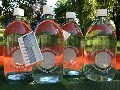 LOGO_Sea Water