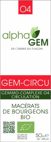 LOGO_GEM-CIRCU