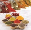 LOGO_Grains & Other Agro Products