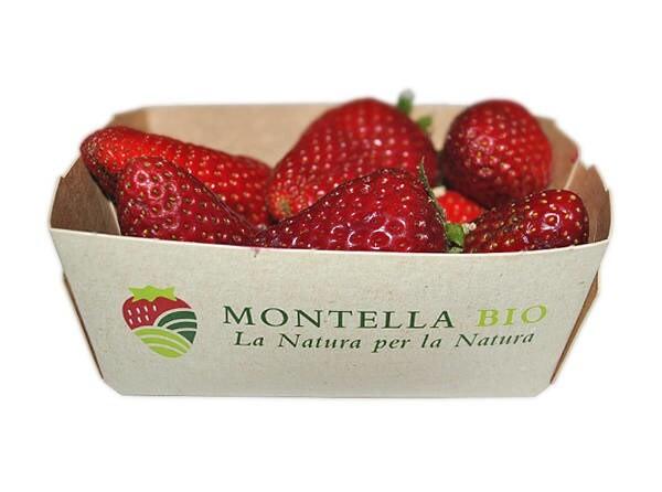 LOGO_BIO Erdbeeren