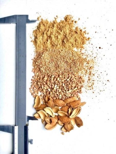 LOGO_organic biodegradable shell granules