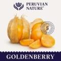 LOGO_Goldene Beeren