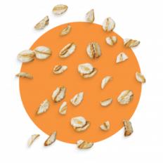 LOGO_Organic Gluten-free Rolled oat flakes