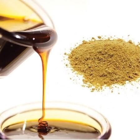 LOGO_Organic Lecithin & Organic Emulsifiers