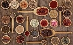LOGO_Organic Herbs /Spices: