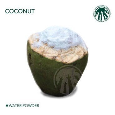 LOGO_COCONUT 100% AMAZONIA