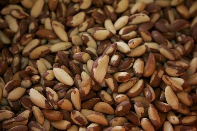 LOGO_Paranüsse/Brazil Nuts