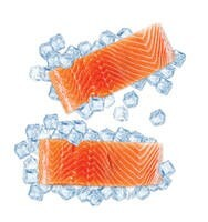 LOGO_Salmon portions (BIO) vacuum packed