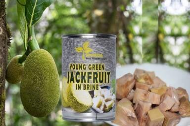 LOGO_Organic Young Green Jack fruit in Brine