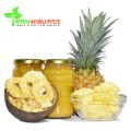LOGO_Organic Pineapple Products