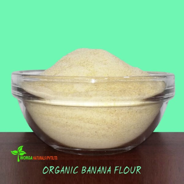 LOGO_Organic Fruits Flour