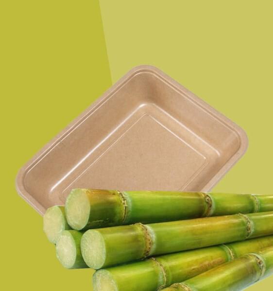 LOGO_Neue nachhaltige Verpackung